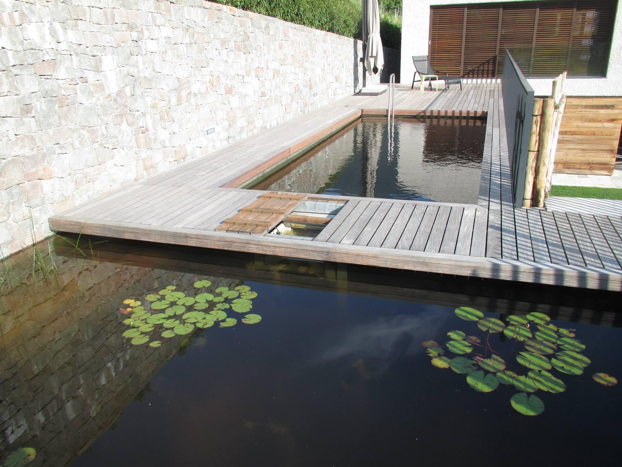 Mettre en place une piscine écologique en auto construction : baignade naturelle
