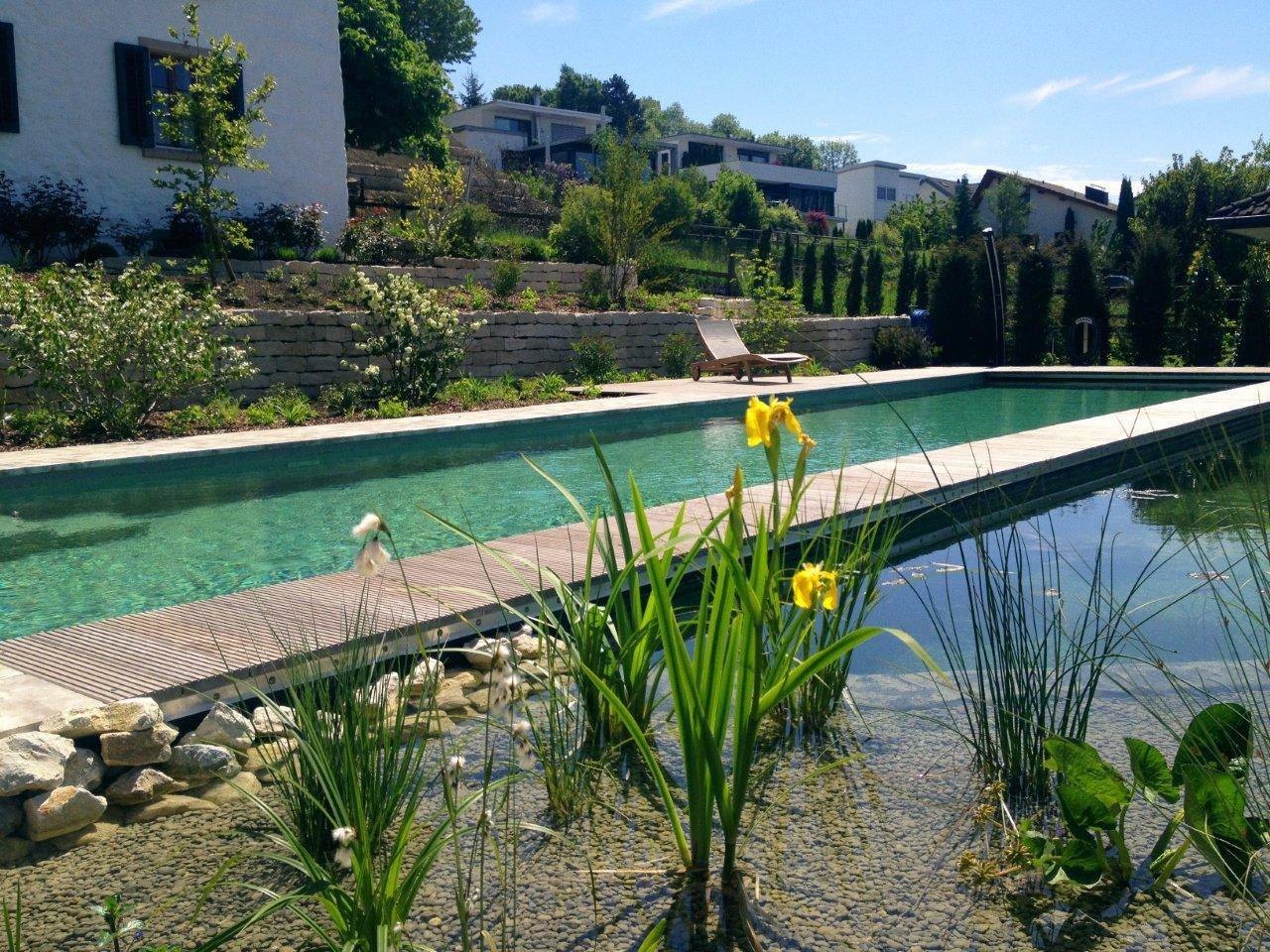 Autoconstruction de piscine écologique et baignade naturelle